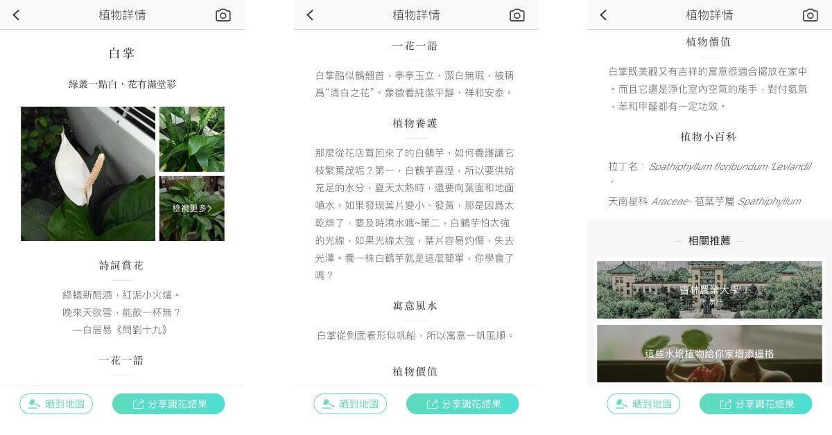 xingseapp_flower-info