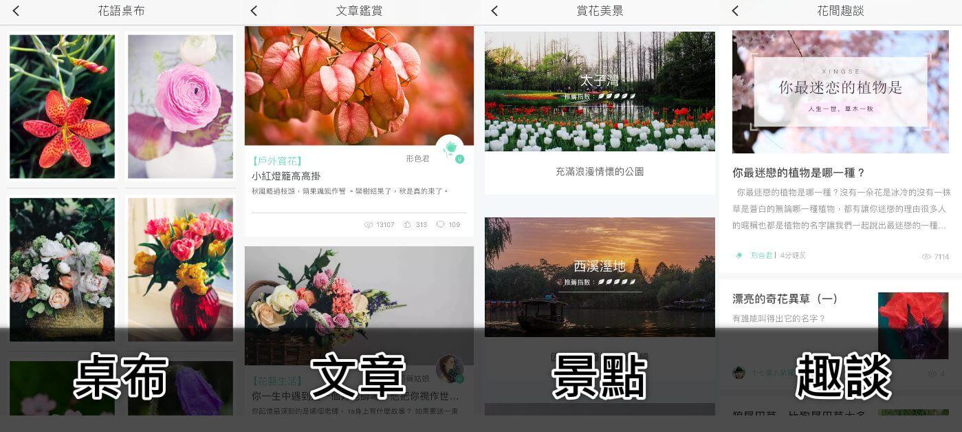 xingseapp_social